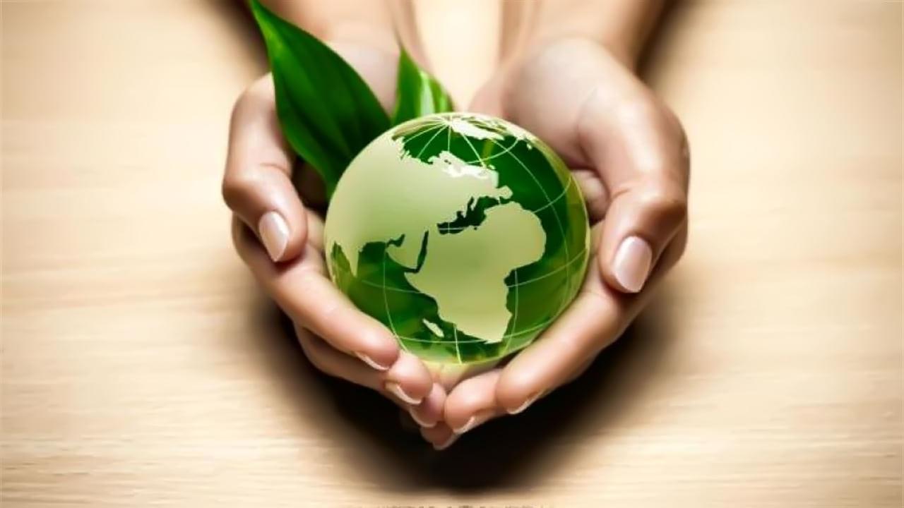 Кредитование производства  биоразлагаемой упаковки