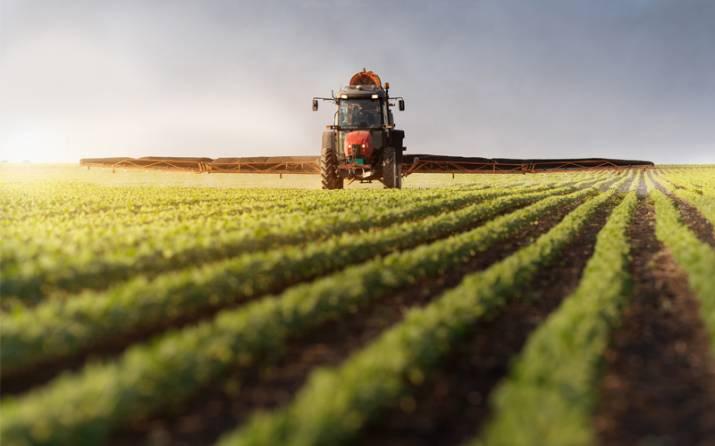 В Браславе эксперты и предприниматели обсудят развитие агробизнеса в районе